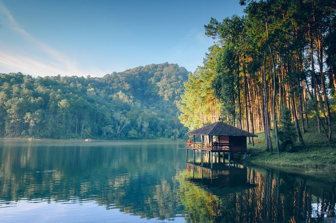 Lake, forest, pine tree, mountain, village, fresh air, beauty, camping, relax, nature, bathing, Thailand